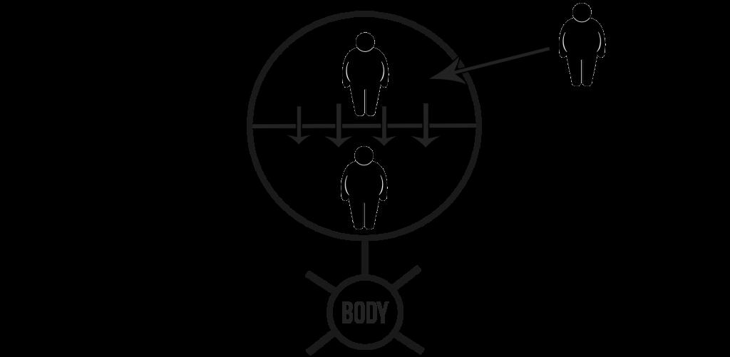 body 5